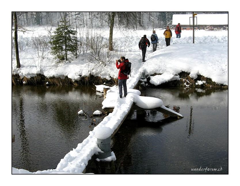 Winterwanderung im Tösstal