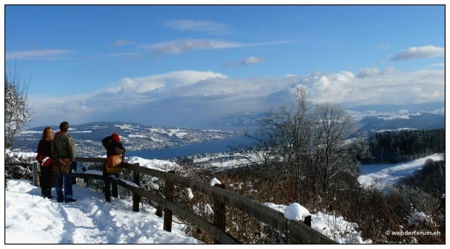Wanderungen Region Zürichsee