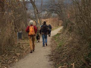 Wanderung von Bad Zurzach nach Waldshut