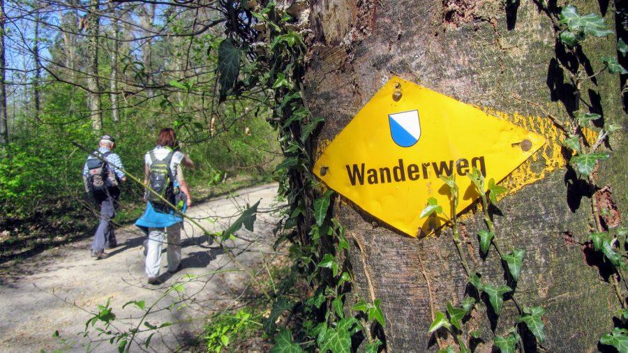 Wandern im kanton zürich