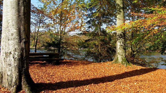 Herbstwanderung