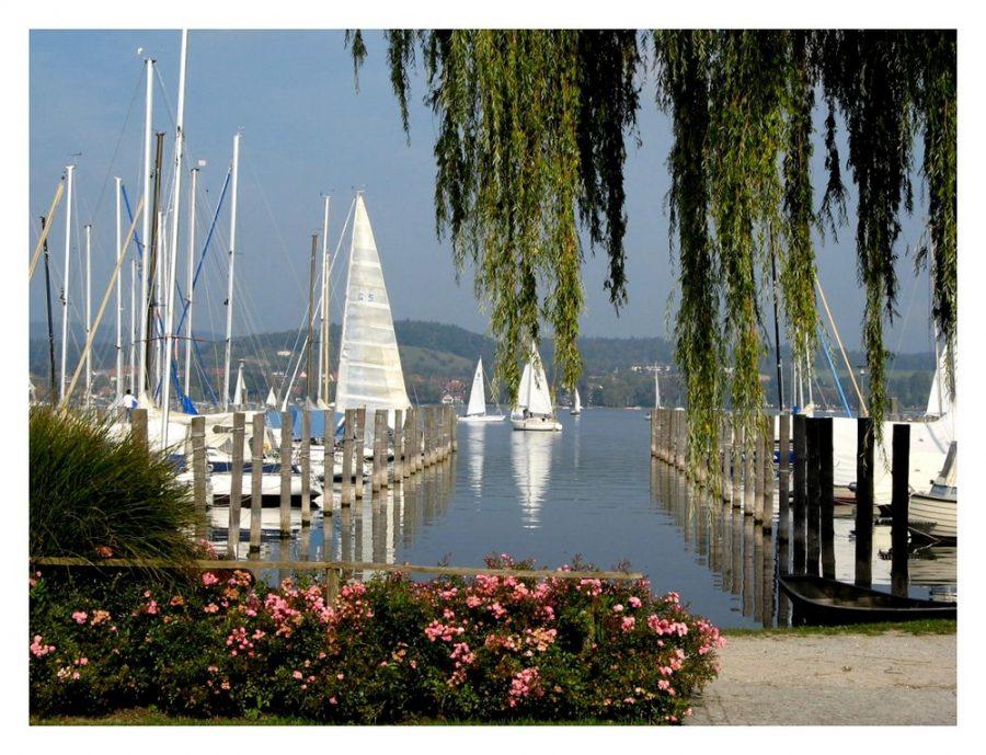 Insel Reichenau Rundwanderung