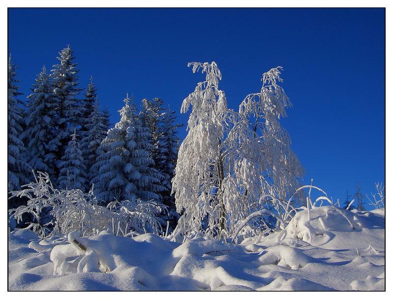 Winterwanderung in der Schweiz