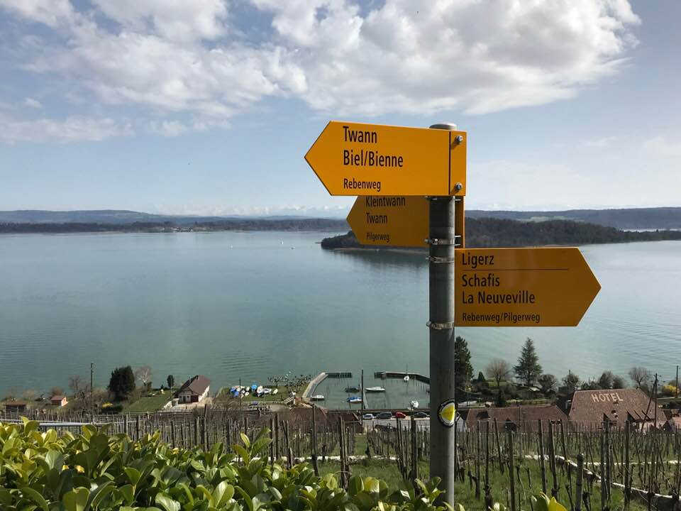 Wanderung Bielersee