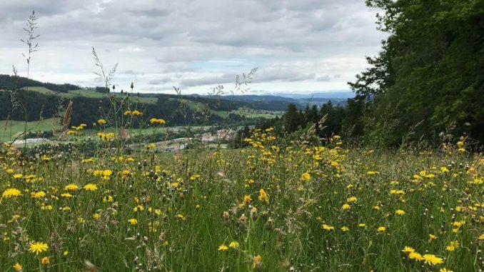 Wandern im Kanton Bern